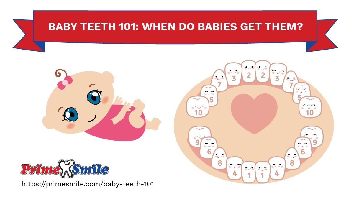 Baby Teeth 101: When Do Your Baby's Teeth Come In?
